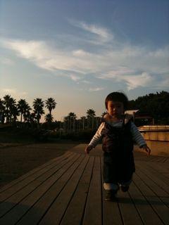 Photo_20101108.jpg